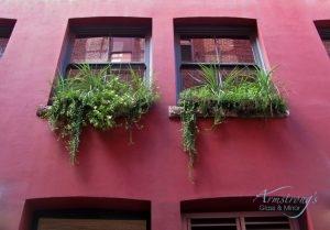 Single Hung Windows, Single Hung Window Replacement